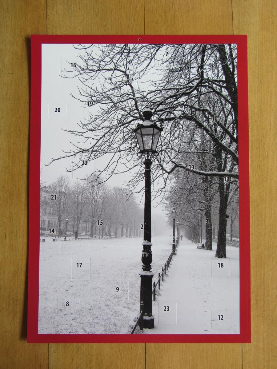 Adventskalender Poppelsdorfer Allee Bonn im Schnee
