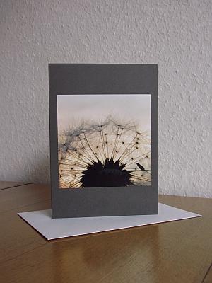 Grußkarte B6 mit Briefumschlag - Pusteblume vor Abendhimmel