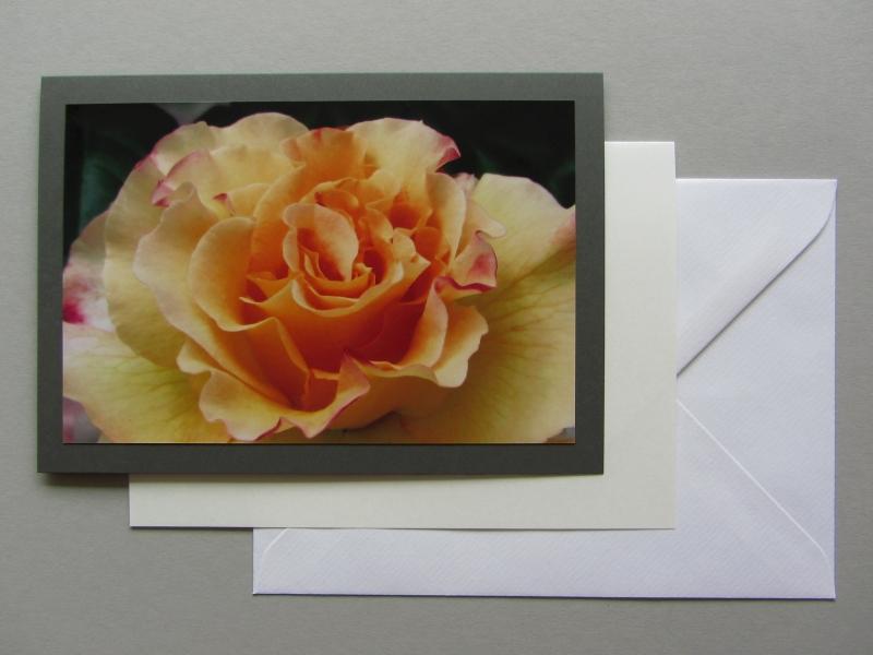 Foto-Grußkarte Rose orange in B6 mit Einlegeblatt und Kuvert, Hanna Kocanis