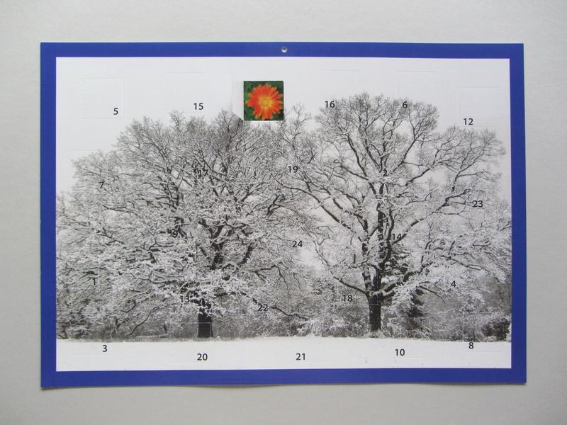 Adventskalender Zwei Bäume im Schnee mit einem offenen Türchen